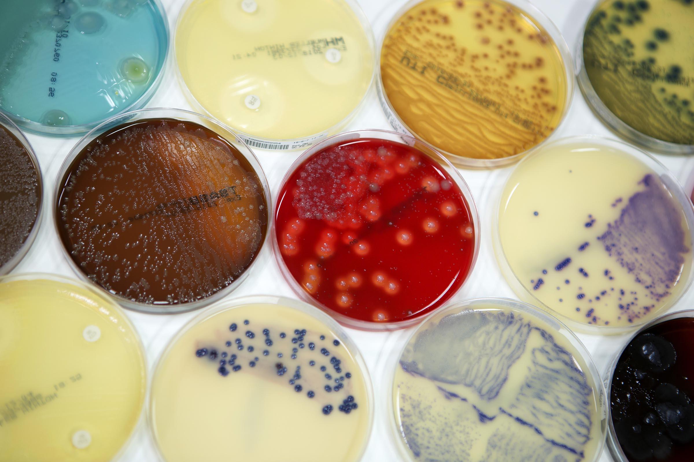 Tensen & Nolte - infectiepreventie
